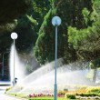 Lawn watering sprinkler in city centre. — Foto Stock