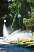 Lawn watering sprinkler in city centre. — Zdjęcie stockowe