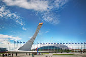 The Olympic Flame Burns Bright At Sochi 2014 — Stock Photo