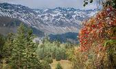 Arhyz. Russia. Caucasus. Karachaevo-Cherkesia. — Stock Photo
