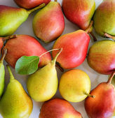 Red and yellow pears — Stock Photo