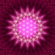 Flower of life - sacred geometry — Stock Photo #21263459