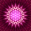 Stock Photo: Flower of life - sacred geometry