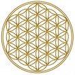 Flower of life - sacred geometry — Stock Photo #21263493