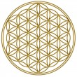 Flower of life - sacred geometry — Stock Photo