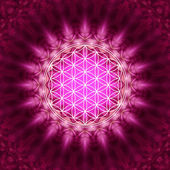 Flower of life - sacred geometry — Stock Photo