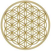 Bloem van het leven - heilige geometrie — Stockfoto