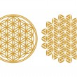 Flower of life - sacred geometry — Stock Vector