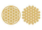 Yaşam - kutsal geometri çiçek — Stok Vektör