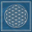 Flower of life - sacred geometry - symbol harmony and balance - Stock Photo
