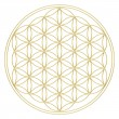 Stock Photo: Flower of life - sacred geometry - symbol harmony and balance