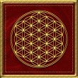 Flower of life - sacred geometry - symbol harmony and balance — Foto Stock