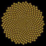Sunflower seeds - golden ratio - golden spiral - fibonacci spiral, — Stock Photo #21339289