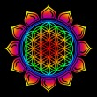 Flower of life - Lotus flower - symbol healing and harmony - Stock Photo