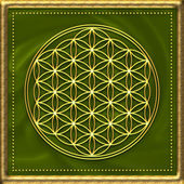 Flower of life - sacred geometry - symbol harmony and balance — Stock Photo