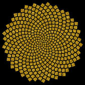 Sunflower seeds - golden ratio - golden spiral - fibonacci spiral, — Stock Photo