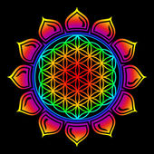 Flower of life - Lotus flower - symbol healing and harmony — Foto Stock