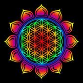 Flower of life - Lotus flower - symbol healing and harmony — Stock Photo