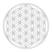 Bloem van leven - heilige geometrie - symbool harmonie en balans — Stockfoto