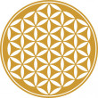 Flower of life - sacred geometry - symbol harmony and balance - Векторная иллюстрация