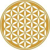 çiçek hayat - kutsal geometri - sembol ahenk ve denge — Stok Vektör