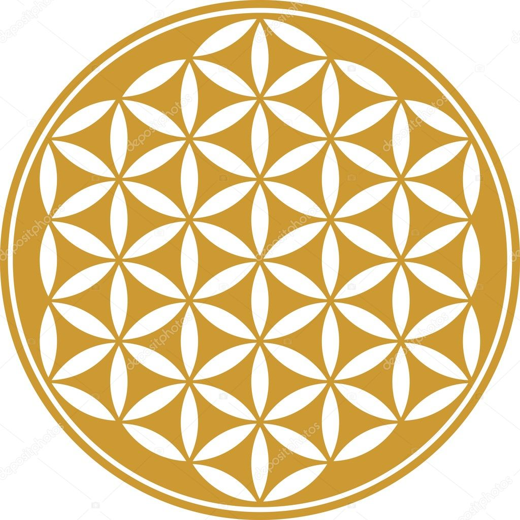 flower of life how to use