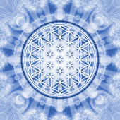 Flower of life - sacred geometry - symbol harmony and balance — 图库照片