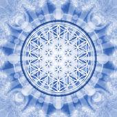 çiçek hayat - kutsal geometri - sembol ahenk ve denge — Stok fotoğraf