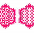 Flower of life - Lotus flower - symbol healing and harmony — Stock Vector #21340111