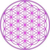 Flower of life - sacred geometry - symbol harmony and balance — Stock Vector
