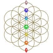 Bloem van leven - chakra's - symbool harmonie en balans — Stockfoto