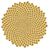 Espiral de fibonacci ratio - espiral dorada - semillas de girasol - oro, — Foto de Stock