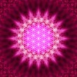 Stock Photo: Flower of life