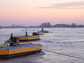 Floater di ancoraggio del cavo del traghetto nel fiume Reno — Foto Stock