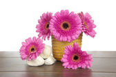 Pink Gerbera in yellow basket and white stones — Stock Photo