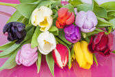 Bouquet of assorted Dutch Tulips — Stock Photo