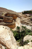 Canyon in south tunisia — Stock Photo