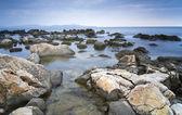 Coastal landscape — 图库照片