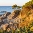 Coastal path tourist in Costa Brava — Stock Photo