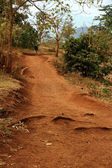 Dirth Path with African School Child — Stock Photo