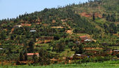 Campagna ruanda — Foto Stock
