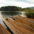 Stock Photo: Dugout Canoes on lake