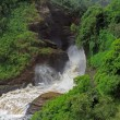 Stock Photo: Frothy Murchison Falls Uganda