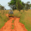 Постер, плакат: Safari Van rolling through Ugandan Savannah