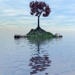 Island with a tree1 — Stock Photo