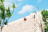Tuile de toiture de la maison dans la préfecture d'okinawa — Photo