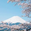 Mt. Fuji with cherry blossom - Stockfoto