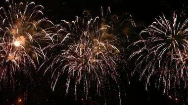 Fireworks — Vidéo
