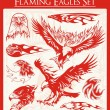 Flaming Eagle Vector Illustrations Set - Imagen vectorial