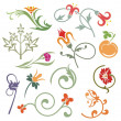 Floral ornamental design elements, vector series. - Stock vektor